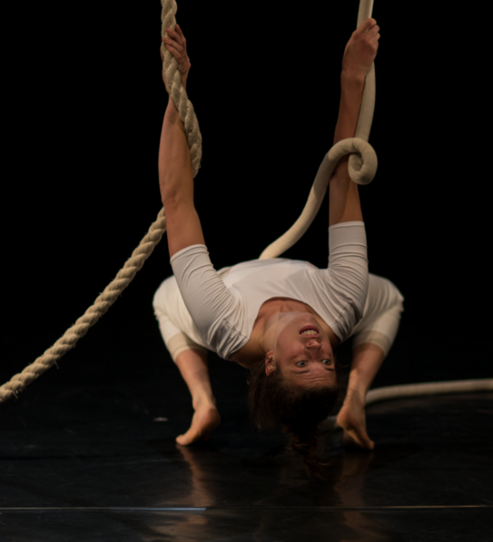 contemporary circus performance
